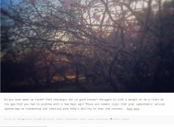 blogger jneditorial